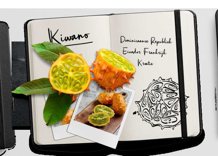 BUD_Journal_Kiwano