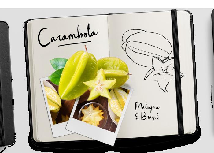 BUD_Journal_Carambola
